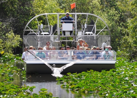 Everglades Tour with Miami Airport Transfer 24 jpg
