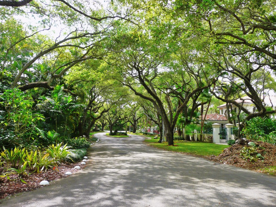 Coral_Gables_street_20100321